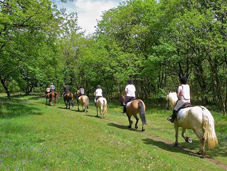 img-Balade-equestre